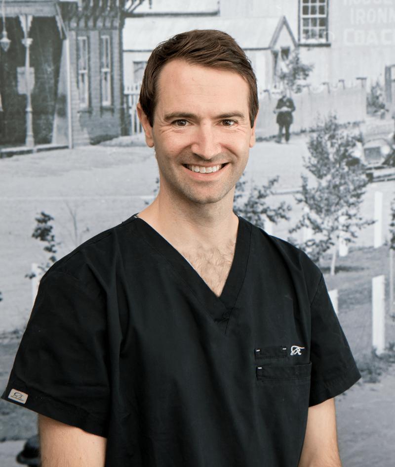 affordable dentist tauranga